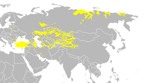 پراکندگی ترک زبانان در جهان